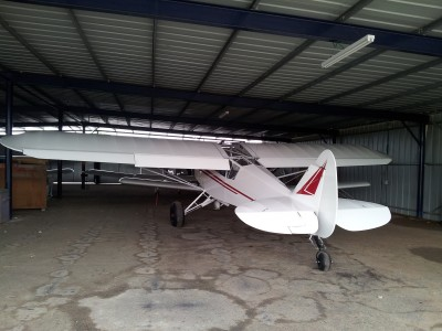 Zlin Savage cub with all options installed for bush flights!
