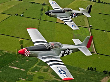 T-51 Mustang - Photo #2