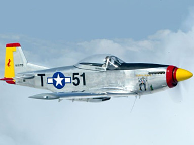 T-51 Mustang - Photo #1