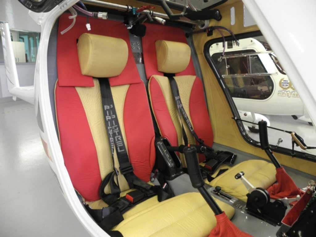 Pipistrel Sinus 912 - Photo #3